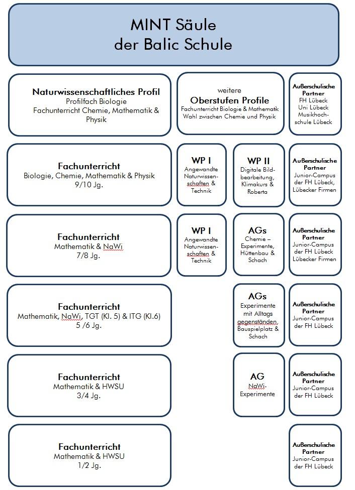 Eine Übersicht über die Aktivitäten der Baltic-Schule im MINT-Arbeitsbereich